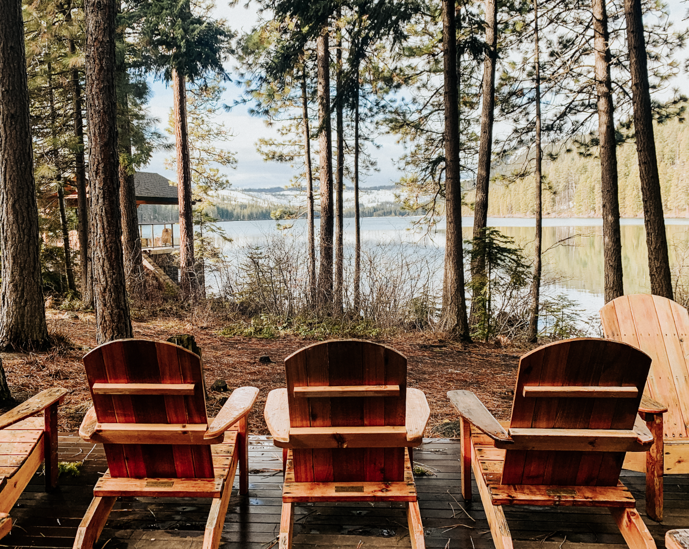 3 redwood chairs are perched in front of redwood trees along suttle lake